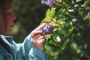 Mädchen pflückt Blüten
