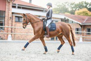 Janine Honert auf einem Pferd